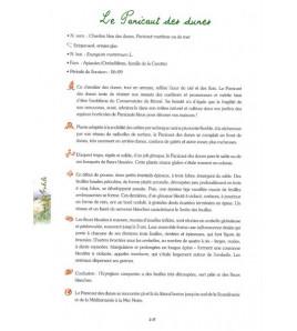 Larmor et la Bénédiction des Courreaux