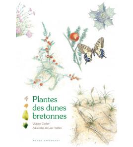 Plantes des Dunes Bretonnes