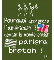 Pourquoi Apprendre l'Américain… ?