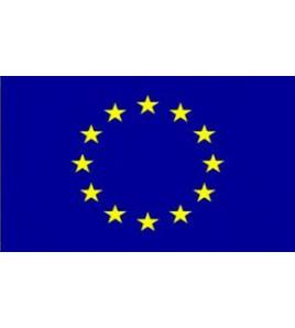 Drapeau Européen 100 x 150 cm